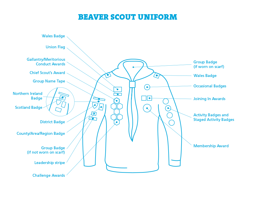 Beaver badge placement diagram